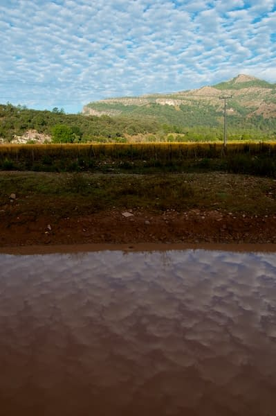 Early morning clouds reflected in a puddle in Cerocahui, Mexico by Ralph Velasco.